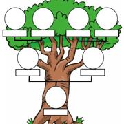 Soy Ağacı çizimi Bitimek